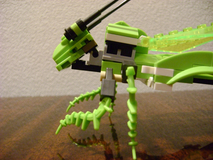 LEGO MOC - 16x16: Animals - Grasshopper: вид груди сбоку.